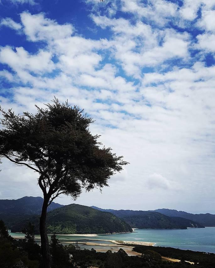 Abel Tasman Awaroa Bay